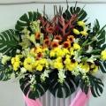 QF0878-Lilies Daisy Wreath
