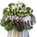 QF0851-funeral wreath flowers