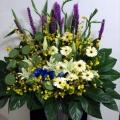 QF1170-wreath lotus lilies
