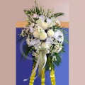 QF1180-Wreath Zhenyang Chrysanthemum Orchid