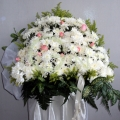 QF1238 white wreath pompom with roses