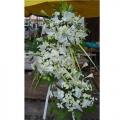 QFFS13-White Pom Pom White Lilies Wreath