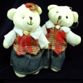 TB0016-bear couple
