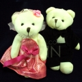TB0017-bear couple